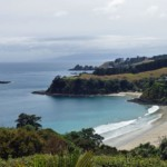 Little Palm Beach, Waiheke Island